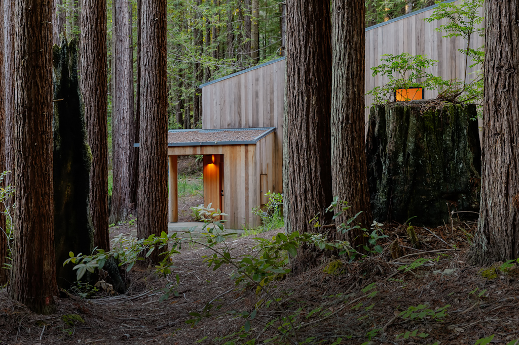 This Tiny Cabin In The Redwoods Is The Perfect Getaway For: Real Estate Photography: Sea Ranch Home Nestled In Redwood